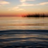BRYANELKUS_90190 | a ripple disturbs the waters of the pamlico sound at sunset