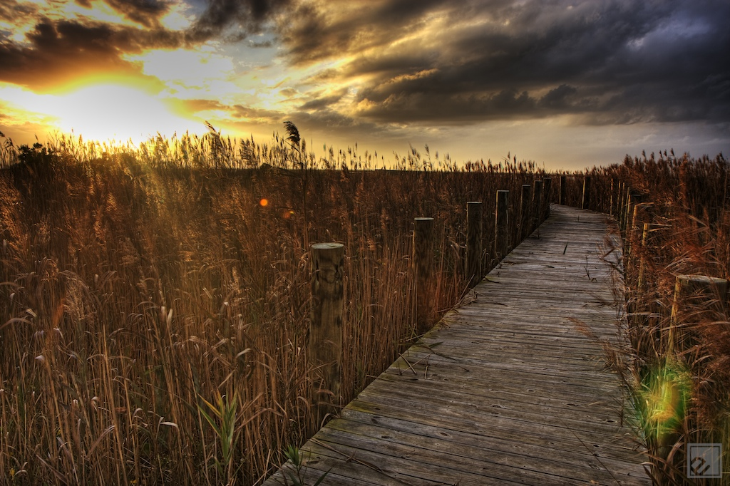 amazing OBX sunset with reeds and a dock out to the pamlico sound in cape hatteras, NC